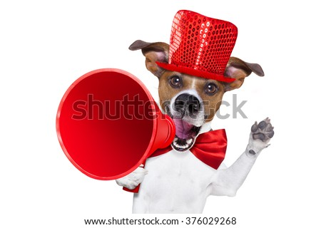 jack russell dog ,shouting  and advertising  sale discount  with retro megaphone or big microphone with party hat and tie , isolated on white background - stock photo