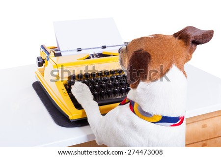 jack russell secretary dog typing on a typewriter keyboard ,isolated on white background - stock photo