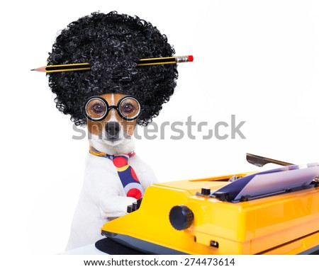 jack russell secretary dog typing on a typewriter keyboard  , isolated on white background, wearing a crazy afro wig - stock photo