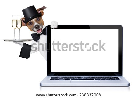 jack russell terrier  dog ready toast for new years eve, behind a laptop pc computer, isolated on white background - stock photo