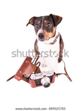 Jack Russell Terrier with a camera on a white background