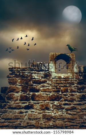 Jackdaw sitting on the wall of a ruined abbey - stock photo