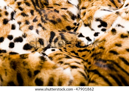 jaguar skin - stock photo
