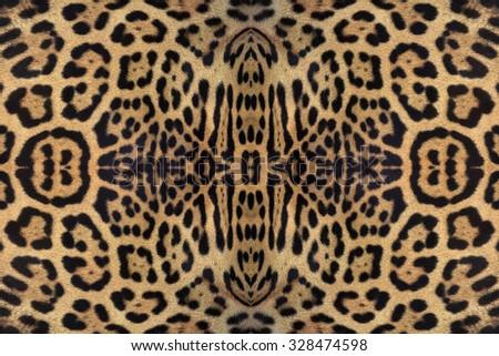 Jaguar skin texture. - stock photo
