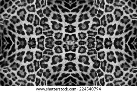 jaguar skins - stock photo