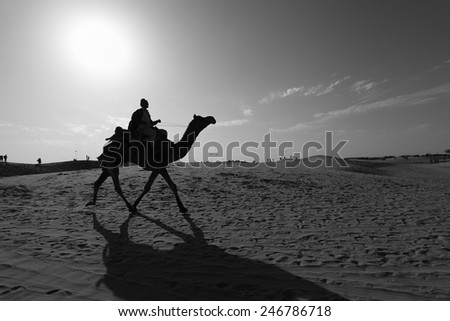 Jaisalmer, India - February 25, 2013:Camel riding is available at the Thar Desert in Jaisalmer. Apart from farming, camel riding activity for tourists is another income source for desert villagers - stock photo