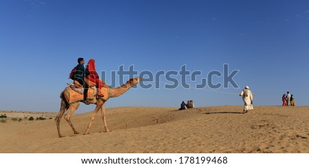 Jaisalmer, India - February 25, 2013: Caravan of camels at the Sam Sand Dune. Camel riding activity for tourists is another income source for desert villagers apart from farming and animal raising - stock photo