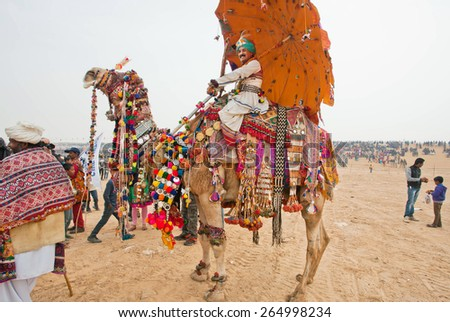JAISALMER, INDIA - MAR 2: Festively decorated camel and his happy owner on the back go to the Desert Festival on March 2, 2015. Every year in the february Jaisalmer takes the village Desert Festival