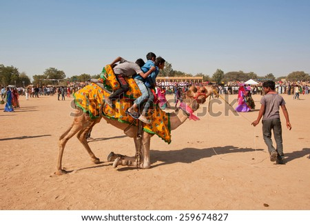 JAISALMER, INDIA - MAR 1: Group of boys trying to come down from the camel after desert safari during the rural Desert Festival on March 1 2015. Every winter Jaisalmer takes the famous Desert Festival