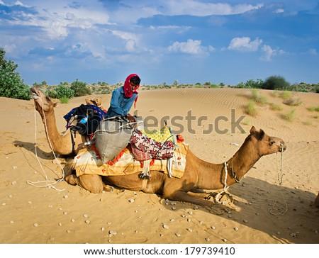 JAISALMER, RAJASTHAN/ INDIA - SEPTEMBER 23, 2013: Cameleer unloads his camel during a rest stop on September 23, 2013 in Jaisalmer,India.  - stock photo