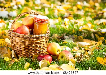 Jam in glass jar and basket full of fresh juicy apples in autumn garden