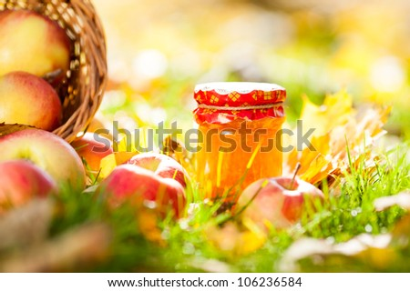 Jam in jar and red apples on a grass. Autumn harvest concept - stock photo