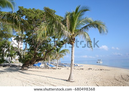 jamaican stock images royaltyfree images amp vectors