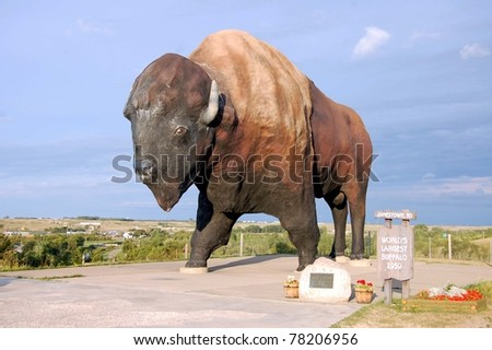 JAMESTOWN, ND - AUGUST 24: The World's Largest Buffalo, seen here on August 24, 2009, can be seen from I-94, and is nicknamed Dakota Thunder.  It is located in Frontier Village in Jamestown, ND - stock photo