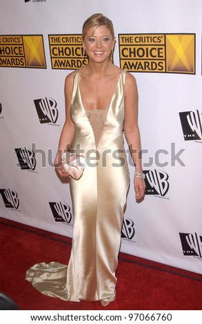 Jan 10, 2005; Los Angeles, CA:  Actress TARA REID at the 10th Annual Critcs' Choice Awards at the Wiltern Theatre, Los Angeles. - stock photo