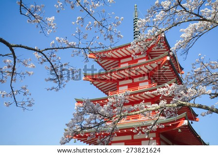 Japan red pagoda with sakura cherry blossom in beautiful spring season - stock photo