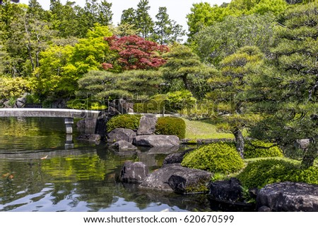 japanese beautiful and magnificent garden with pond with koi carps lot of green color