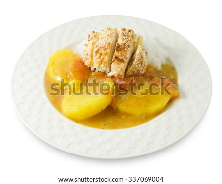 Japanese Cuisine and Food, Delicious Deep Fried Pork Cutlet or Tonkatsu Served with Steamed Rice and Curry Sauce Isolated on White Background. - stock photo