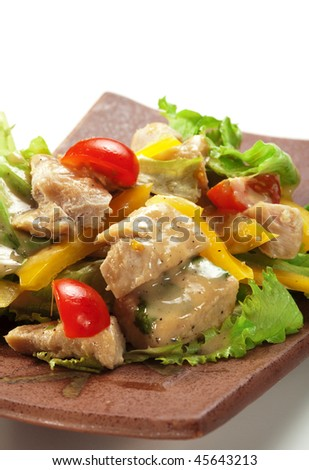 Japanese Cuisine - Salad made of Chicken Breast, Salad Leaf, Cherry Tomato and Sweet Pepper. Garnished with Garlic Sauce