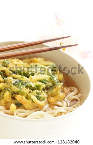 Japanese cuisine, Vegetable tempura and Udon noodle close up on white background - stock photo