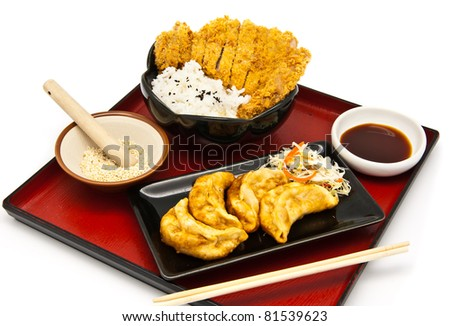 Japanese food style, rice with fried chicken and Fried Dumplings - stock photo