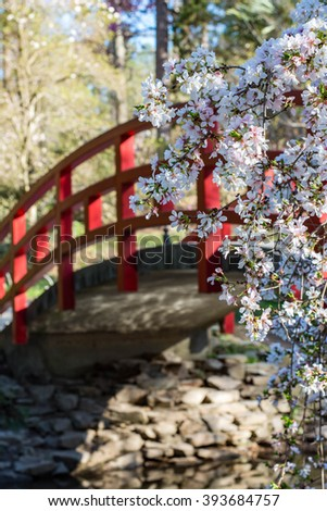 japanese garden bridge - Japanese Garden Cherry Blossom Bridge