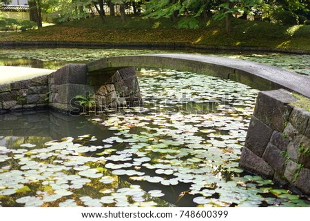 https://thumb1.shutterstock.com/display_pic_with_logo/167494286/748600399/stock-photo-japanese-garden-in-autumn-748600399.jpg
