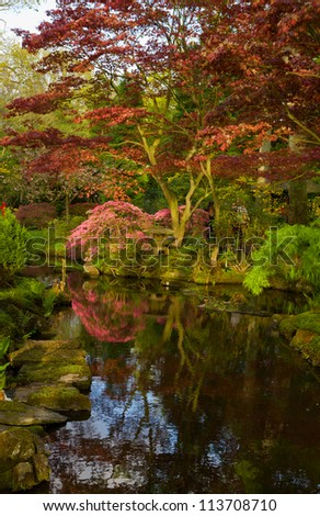 Japanese garden in spring, Den Haag, Holland