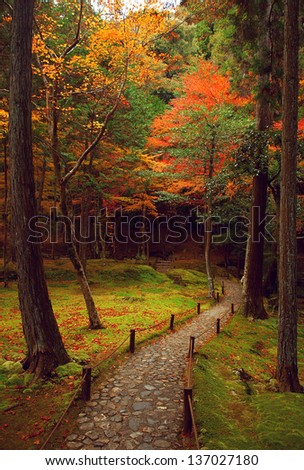 Japanese Garden shoot at Kyoto in autumn 2012. - stock photo