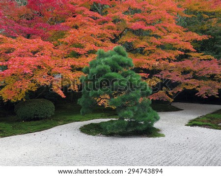 japanese garden view in autumn season - stock photo