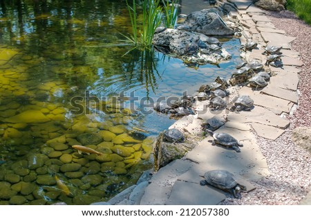Japanese garden with a small waterfall and a pond with koi. - stock photo