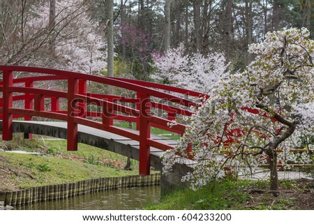 Japanese Garden Cherry Blossom Bridge duke gardens stock images, royalty-free images & vectors