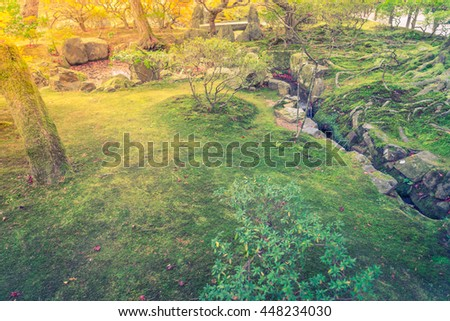 Japanese green moss garden,Filtered image processed vintage effect. - stock photo