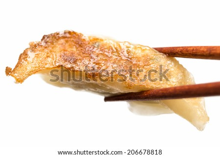 Japanese gyoza dumpling isolated on white background - stock photo