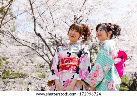 japanese kimono women and cherry blossom - stock photo