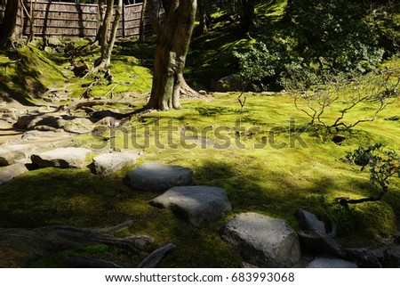 Japanese traditional garden in Kyoto
