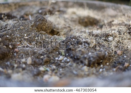 jar side with old earth macro texture close up background