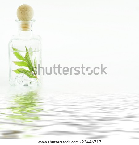 Jar with fresh leaves (SPA concept) with soft focus reflected in the water - stock photo