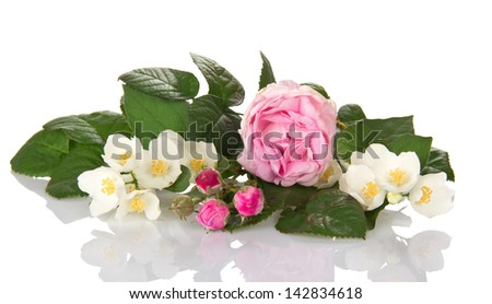 Jasmine branch, tea-rose and the buds of a rose isolated on white