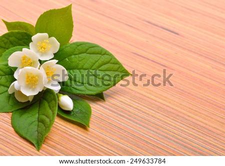 Jasmine flower bouquet on wooden background - stock photo