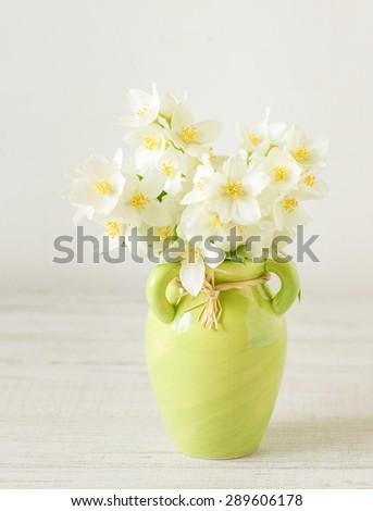 Jasmine flowers,  selective focus  - stock photo