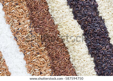 Jasmine rice, Brown rice, Red rice,Black rice, Mixed rice and Riceberry texture in pie shape for background