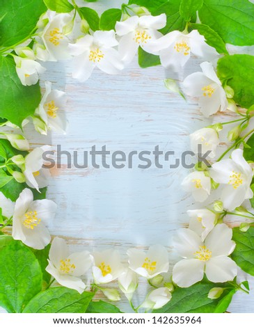 flowers frame autumn flowers frame jasmine spring flowers frame on