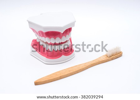 jaw model and toothbrush on white background. - stock photo
