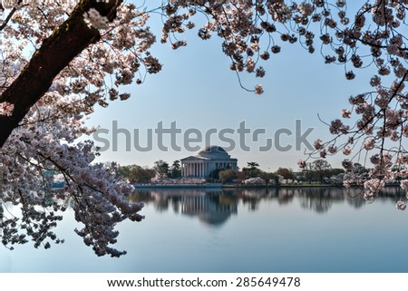 Jefferson Memorial during the Cherry Blossom Festival. Washington, DC - stock photo