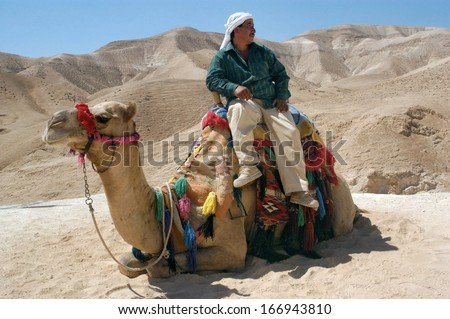 JERICHO, ISRAEL - APR 28:Bedouin man sit on a camel.Famously, Bedouin shepherds were the first to discover the Dead Sea Scrolls in the caves of Qumran in 1946.