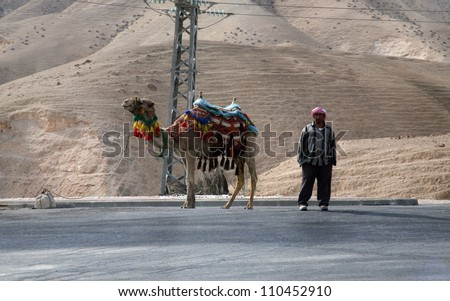 JERICHO , ISRAEL - JANUARY 01: Unidentified Bedouin man wait tourist near his dromedary in Jericho, Israel on January 01, 2008. Many Bedouin men work as guides for day-trips in the Judea desert. - stock photo