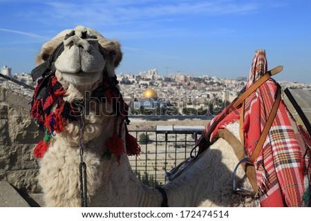 Jerusalem - Mount of Olives and old city - stock photo