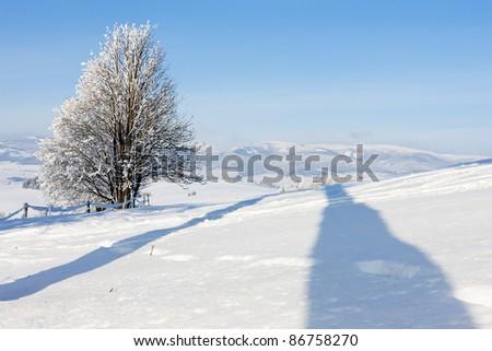 Jeseniky Mountains in winter, Czech Republic - stock photo