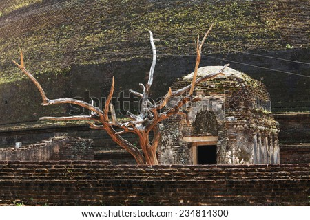 Jethawana Dagoba, Anuradhapura, Sri Lanka - stock photo